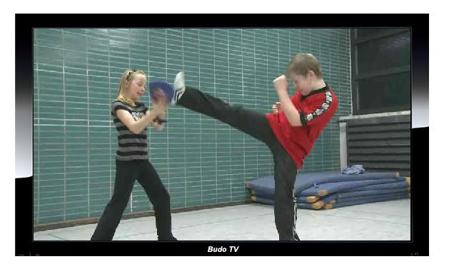 BUDO TV vermittelt ein lebendiges Bild vom Trainingsprogramm
